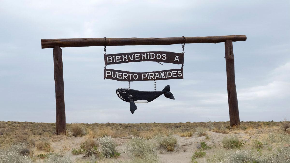Peninsula Valdès écriteau baleine puerto piramides