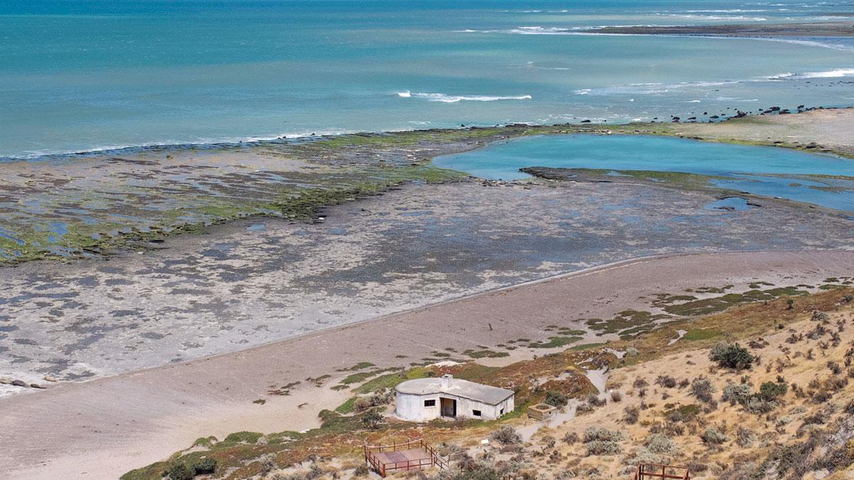 Peninsula Valdès Punta Delgada