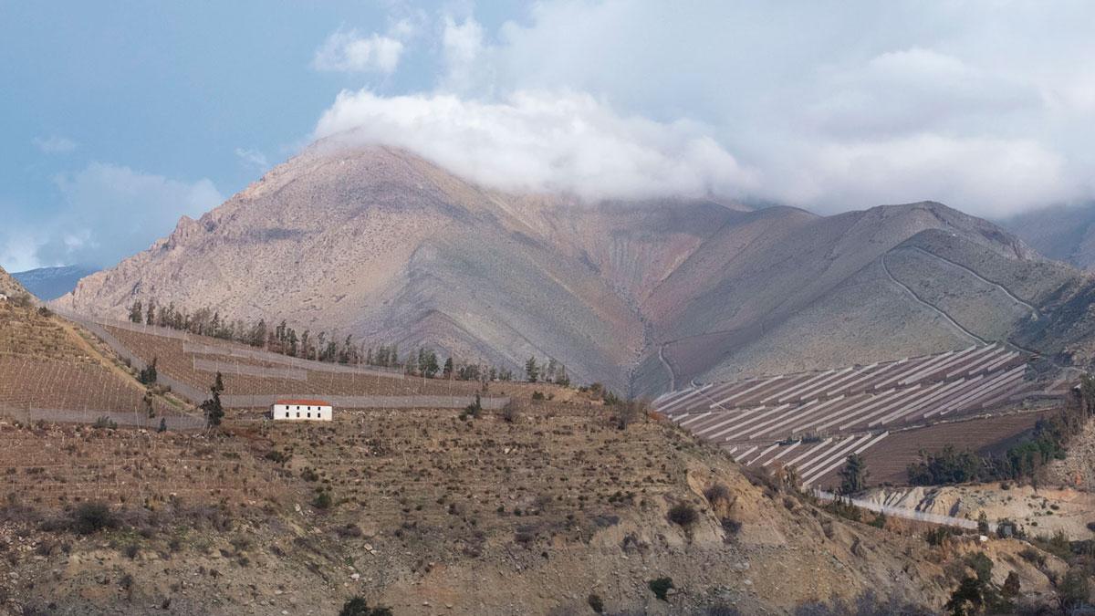 Chili Valle del Elqui domaine vignicole paysage