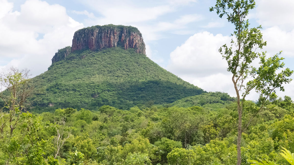 Paraguay Cordillera Amambay Cerro Guazu