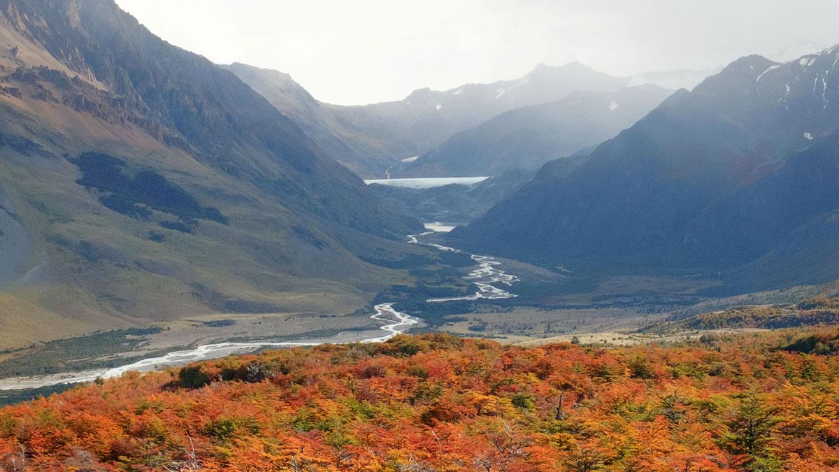 El Chalten forêt automne